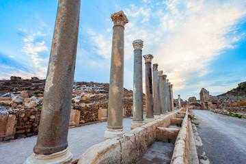 Perge ancient anatolian city, Antalya