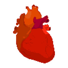 Vector illustration of pixel Human Heart isolated on a white background