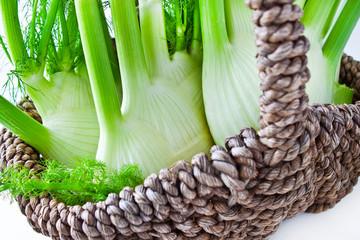Fresh fennel and basket