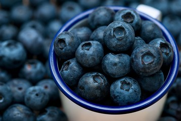 Group of blueberries in the cup on group of berry background close up picture