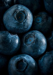 Macro picture of blueberry pattern background