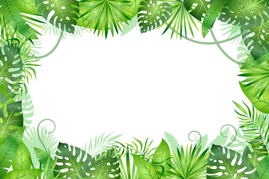 Jungle background. Tropical leaves frame. Rainforest foliage plants, green grass trees. Paradise african wildlife jungle