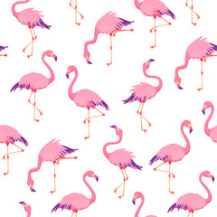 Poster Flamingo Pink flamingos pattern. Cute tropical birds, seamless flamingo hawaii texture bird repeat print decor wallpaper
