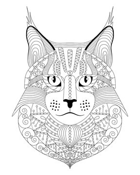 Hand drawn maine coon cat with ethnic doodle pattern. Antistress coloring page for adults. Vector illustration, isolated on white.