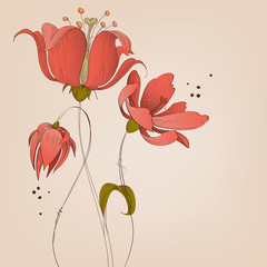 Fototapete - Lily flowers background