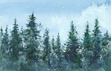 watercolor coniferous forest