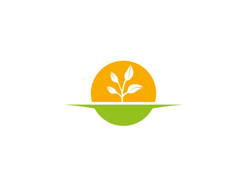Agricultural soil and plant with big sun for Cultivation of solar plants logo