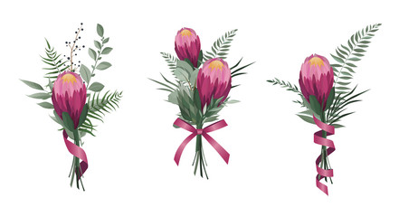 Vector flowers set. Colorful floral collection with leaves and flowers. Protea Flower bouquet.