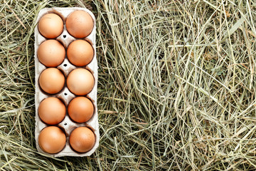 fresh eggs in a tray