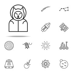 Fototapeta dog cosmonaut icon. Cartooning space icons universal set for web and mobile obraz