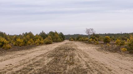 Panzerweg