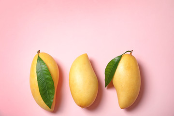 Flat lay composition with mango fruits on color background. Space for text