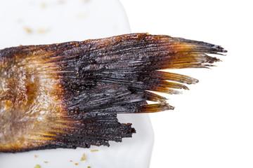 Tail of grilled dorado fish.