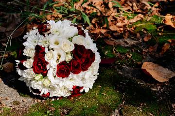 photo bouquet, flower, nature, beauty