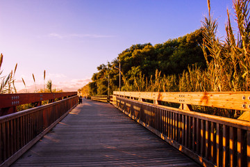 """Promenade """"Senda Litoral"""". Beach and promenade of Marbella."""