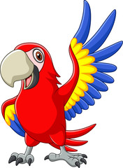 Cartoon macaw waving