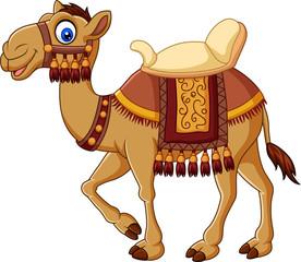 Cartoon funny camel with saddlery