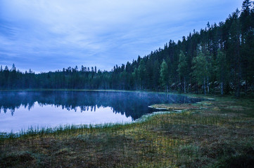 Pond in the forest during a summer night