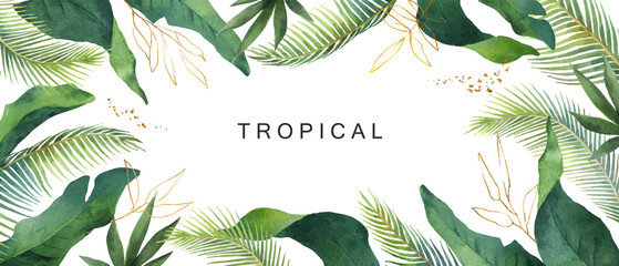 Watercolor vector banner tropical leaves isolated on white background.