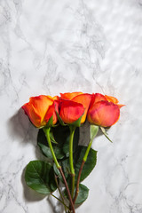 Colorful roses, valentines day, 3 roses, orange roses on marble floor, flowers and love