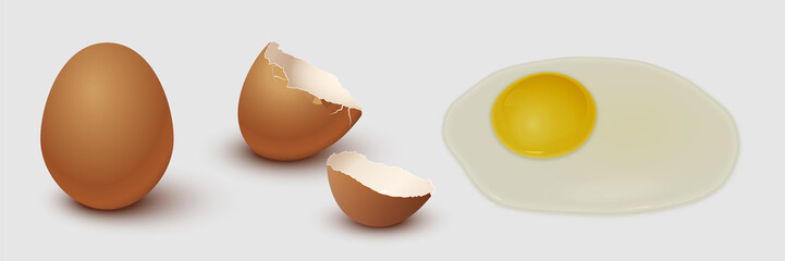 Brown chicken egg, eggshell and yolk isolated on gray background. Vector illustration.