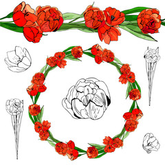Hand drawn  graphic and colored sketch with wreath and endless brush of red tulip flowers and leaves isolated on white  background.