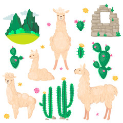 Lama and cactus set. Alpaca wool and llamas, succulents and Peru american valley with mountins vector illustration. Cartoon style.