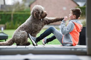 Junge und Hund Freunschaft