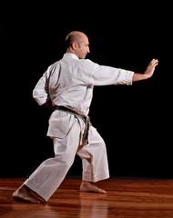 maestro en artes marciales
