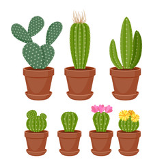 Cactuses set vector illustration.