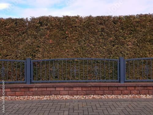 Gartenzaun Zaun Tor Zauntor Aus Eisen Stock Photo And Royalty