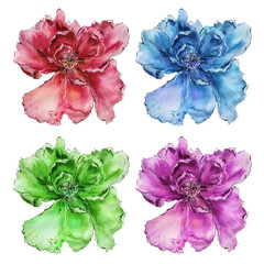 Flowers set. Watercolor colorful flowers for decor. Floral design set from four flowers. Red, blue, green, purple flower.