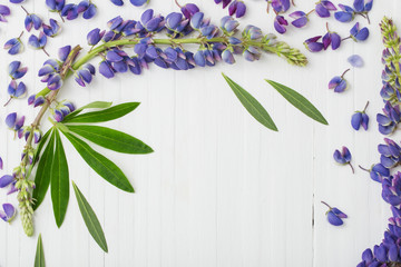 lupine on white wooden background