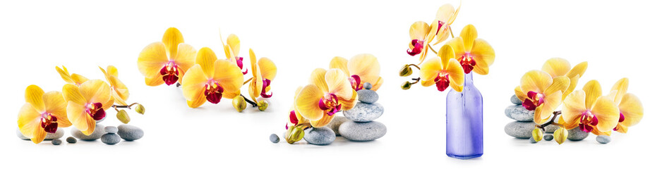 Tuinposter Orchidee Yellow orchid flowers and spa stones set