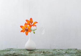 orange lily in vase on white background
