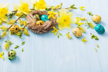 Easter eggs in nest with spring flowers on wooden background