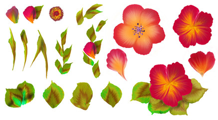 Flowers set one stroke style painting on background.