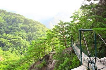 Suspension bridge, Kumgangsan mountains, North Korea