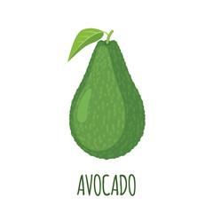 Avocado icon in flat style on white background.