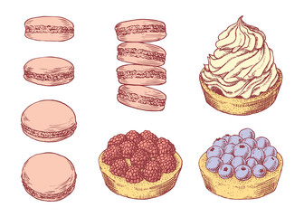 Set of delicious hand drawn creamy biscuit, french macaroons and tarts with berries. Engraving style vintage vector lineart colored illustration. Collection of sweet desserts.