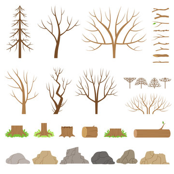 Botanical collection. Trees, bushes, logs, branches, stones and other natural elements.