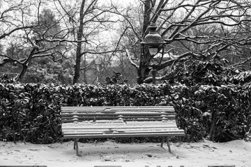 Garden park in Rennes to Thabor, bench with snow, France