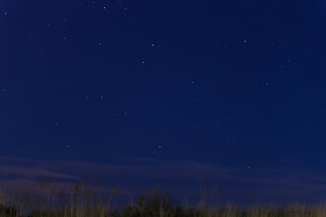 view of blue night sky starry with grass moving through air garter