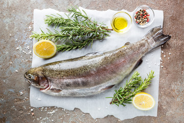 Raw trout fish on paper with rosemary and lemon on a stone table, top view