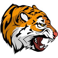tiger head vector drawing, tiger face drawing sketch, tiger head colored drawing, vector graphics to design
