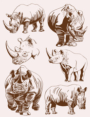 Graphical vintage set of rhinos ,retro illustration