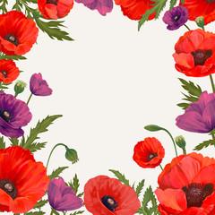 Poppy framed background