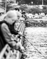 Many people are fishing from the pier in Lorne, Victoria, Australia