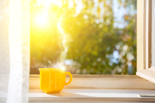 Good morning! Cup on the window with sun