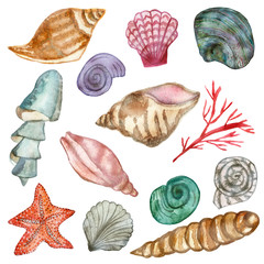 Set of sea shellfish painted in watercolor isolated on white background. Hand painted for beautiful invitation design, greeting cards, posters and bags. Starfish and red corals.